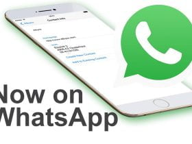 Albyco now on WhatsApp!